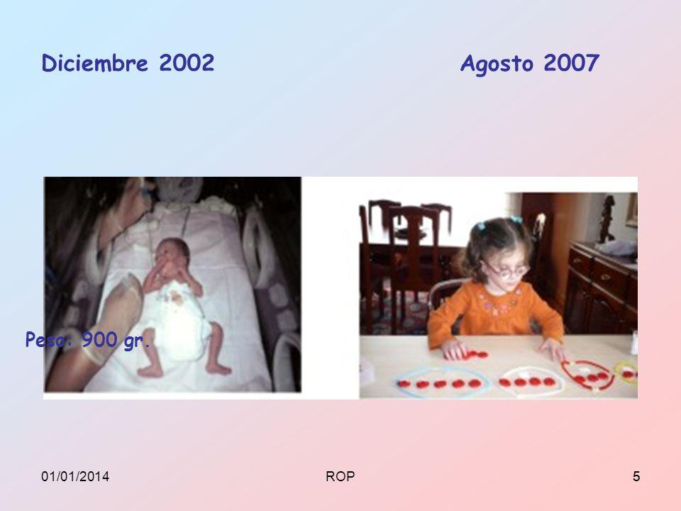 Diciembre 2002 Agosto 2007 Peso: 900 gr. 501/01/20145ROP