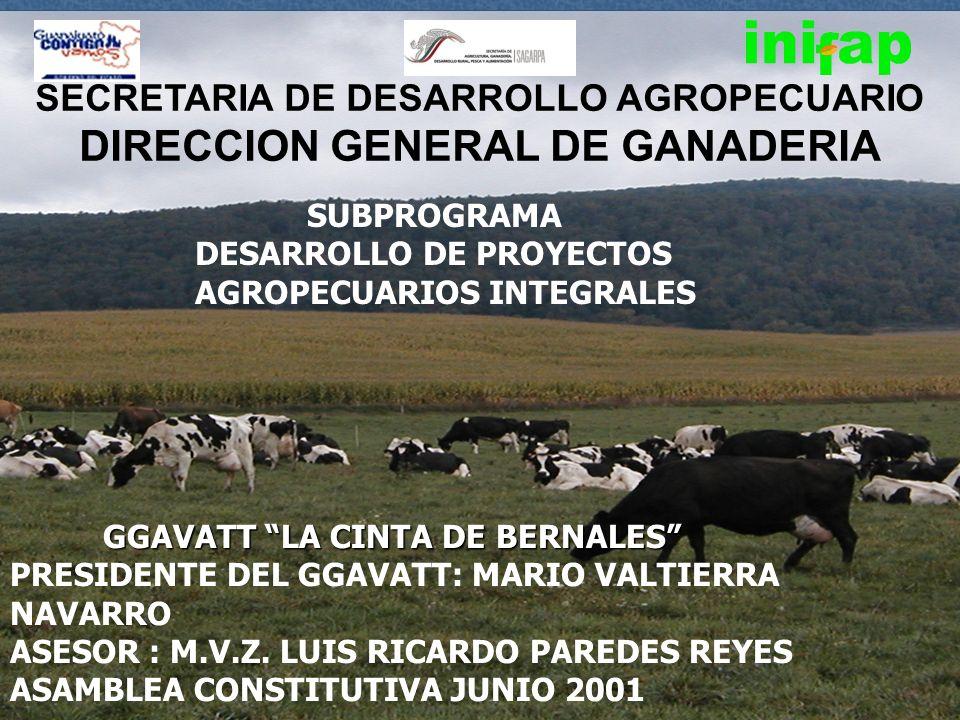 SECRETARIA DE DESARROLLO AGROPECUARIO DIRECCION GENERAL DE GANADERIA SUBPROGRAMA DESARROLLO DE PROYECTOS AGROPECUARIOS INTEGRALES GGAVATT LA CINTA DE