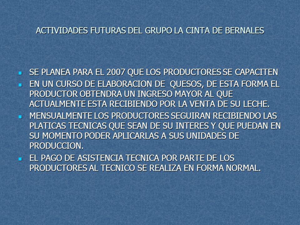 ACTIVIDADES FUTURAS DEL GRUPO LA CINTA DE BERNALES SE PLANEA PARA EL 2007 QUE LOS PRODUCTORES SE CAPACITEN SE PLANEA PARA EL 2007 QUE LOS PRODUCTORES