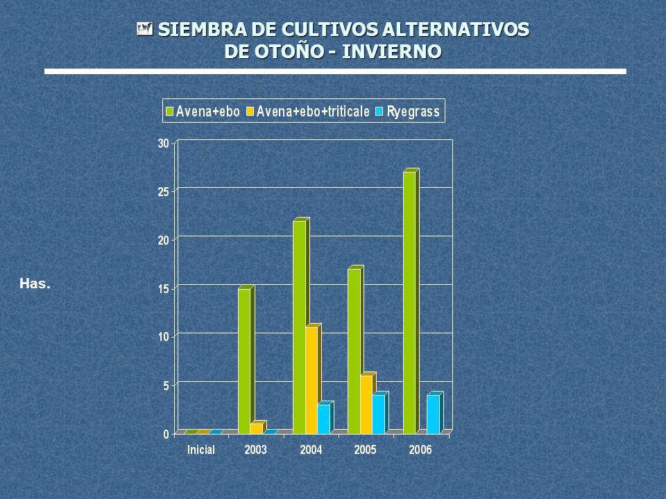 SIEMBRA DE CULTIVOS ALTERNATIVOS DE OTOÑO - INVIERNO SIEMBRA DE CULTIVOS ALTERNATIVOS DE OTOÑO - INVIERNO Has.