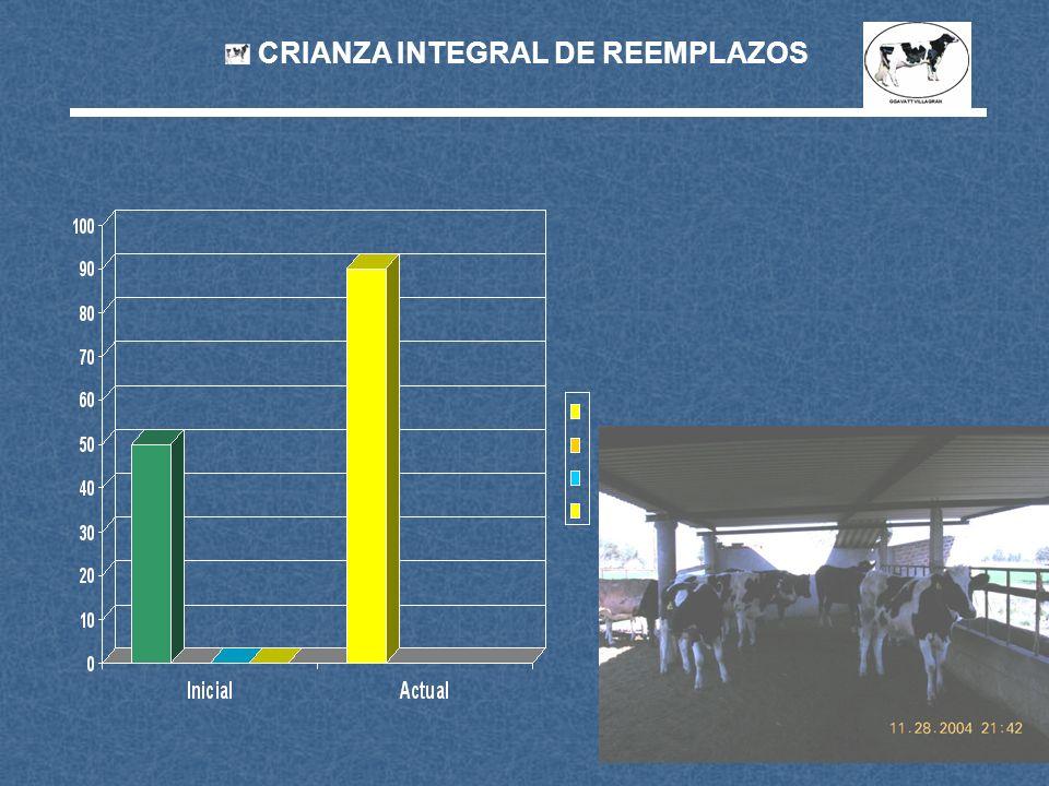 CRIANZA INTEGRAL DE REEMPLAZOS