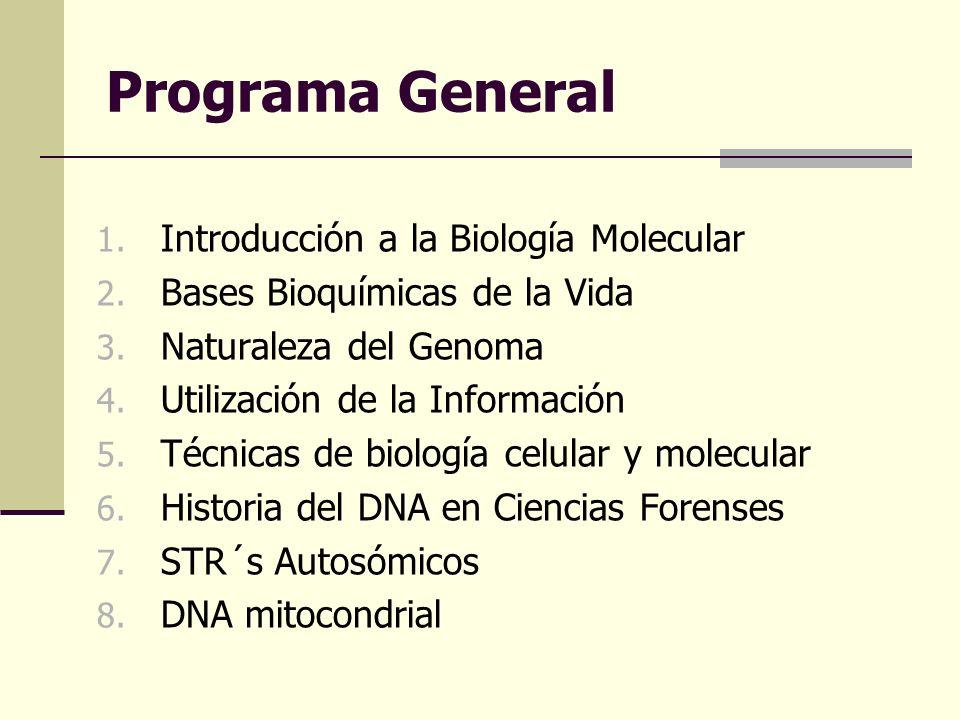 Programa General 1. Introducción a la Biología Molecular 2. Bases Bioquímicas de la Vida 3. Naturaleza del Genoma 4. Utilización de la Información 5.