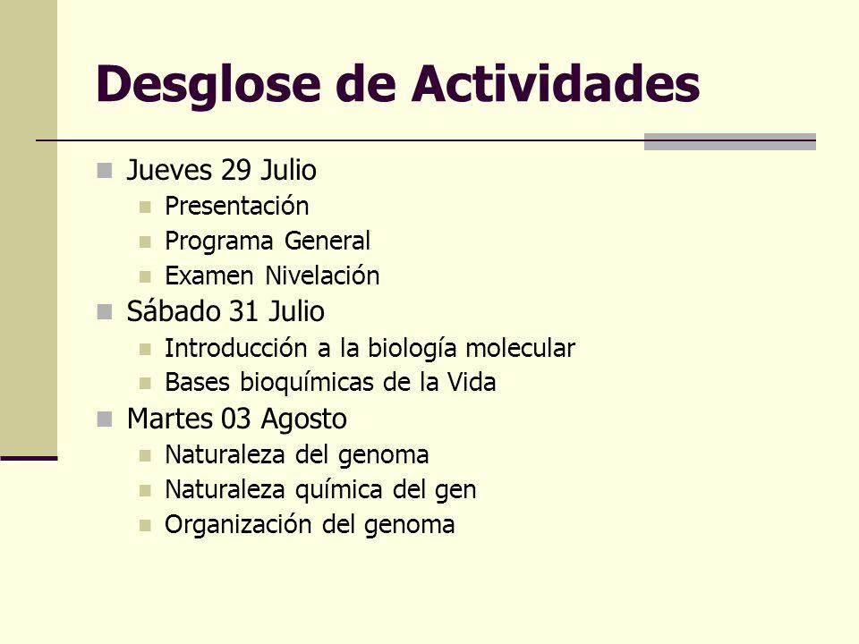 Desglose de Actividades Jueves 29 Julio Presentación Programa General Examen Nivelación Sábado 31 Julio Introducción a la biología molecular Bases bio