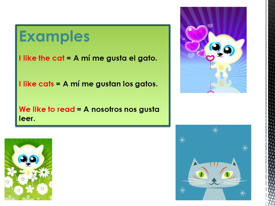 Examples I like the cat = A mí me gusta el gato. I like cats = A mí me gustan los gatos. We like to read = A nosotros nos gusta leer. Examples I like