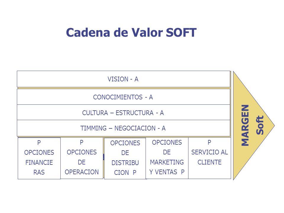 ACTIVIDADES SECUNDARIAS ACTIVIDADES PRIMARIAS Cadena de Valor SOFT VISION - A CONOCIMIENTOS - A CULTURA – ESTRUCTURA - A TIMMING – NEGOCIACION - A P O