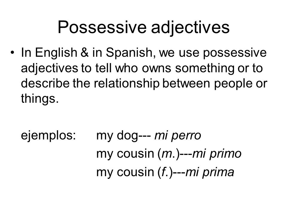 In English, the forms dont change for example: my dog my dogs my cousin my cousins BUT in Spanish, forms DO change depending on the number of the noun they describe (plural or singular noun)