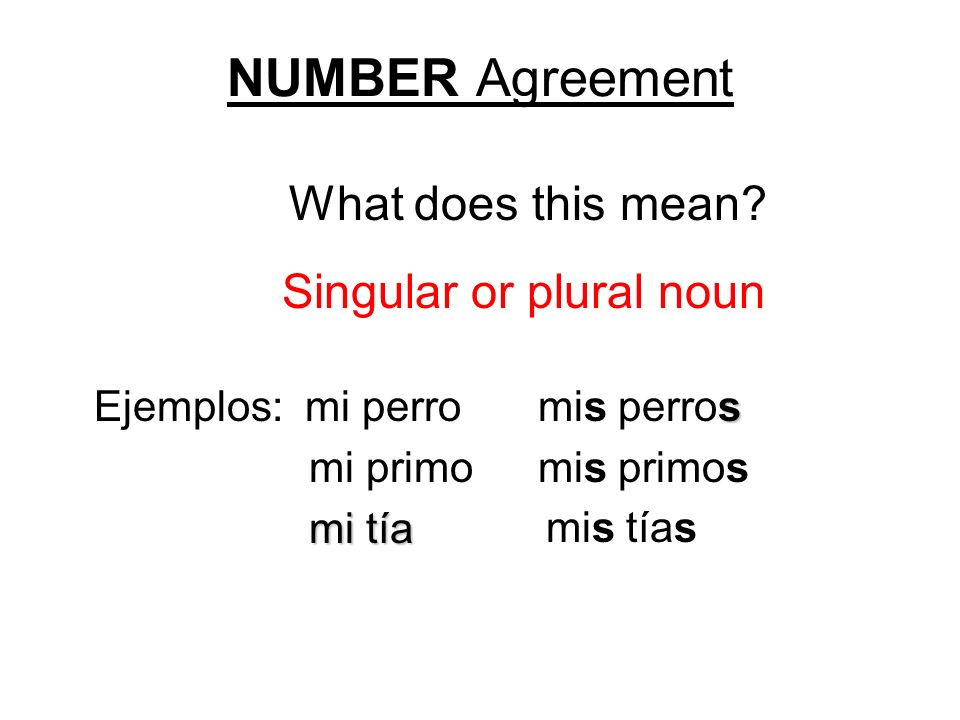 NUMBER Agreement What does this mean? s Ejemplos: mi perromis perros mi primomis primos mi tía mi tía mis tías Singular or plural noun