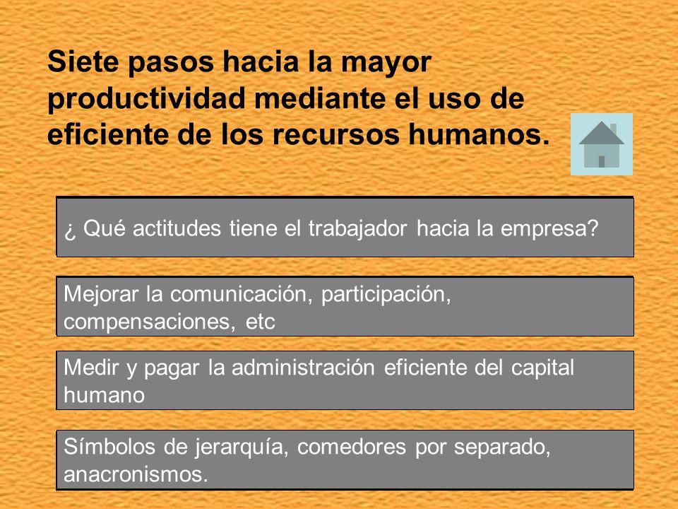 Siete pasos hacia la mayor productividad mediante el uso de eficiente de los recursos humanos. Paso 1: Diagnóstico Paso 2: Identificar las oportunidad