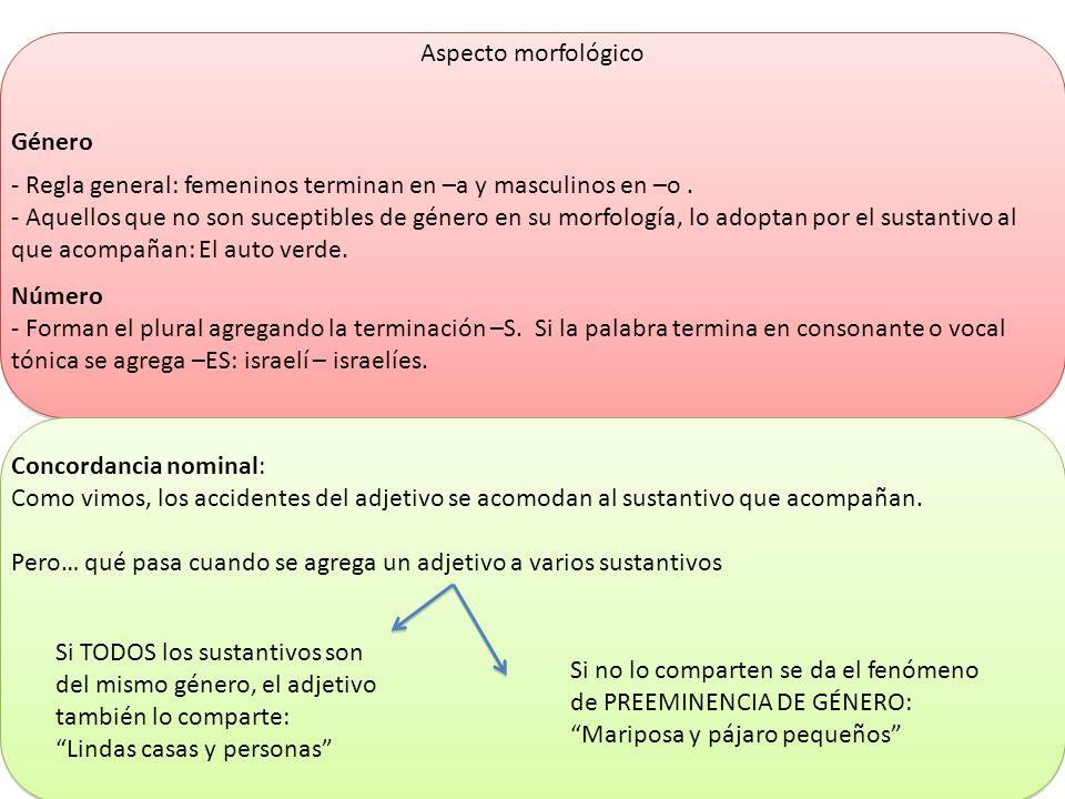 Aspecto morfológico Género - Regla general: femeninos terminan en –a y masculinos en –o. - Aquellos que no son suceptibles de género en su morfología,