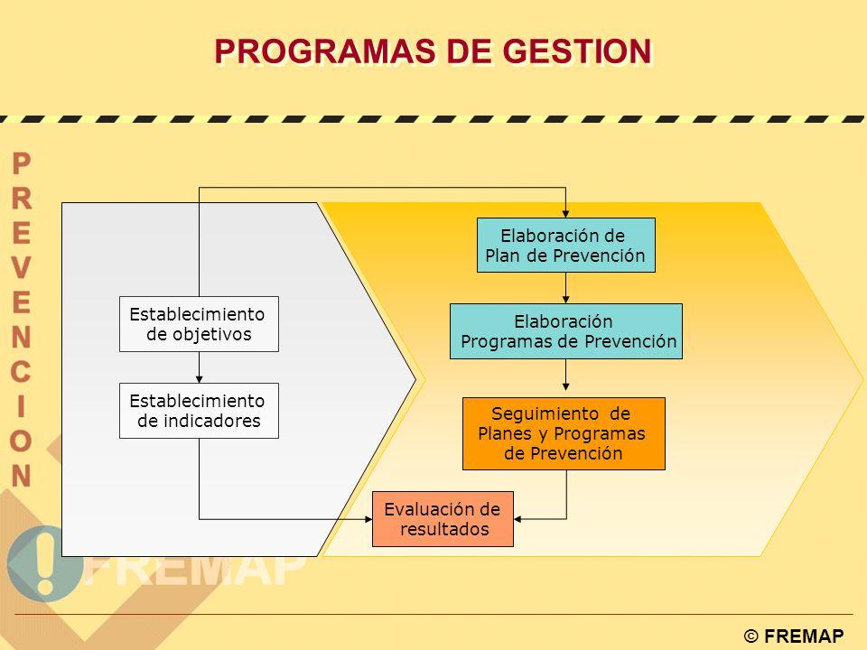 © FREMAP OHSAS 18001:1999 - Planificación de la identificación, la valoración y el control de los riesgos 4.3.4. PROGRAMA DE GESTIÓN La organización d