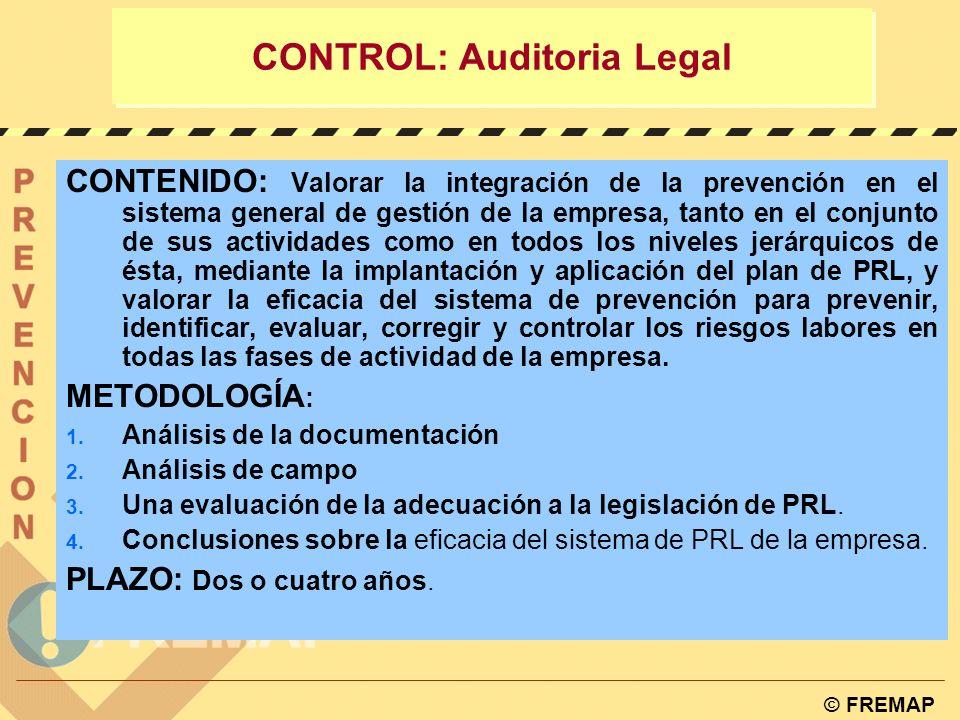 © FREMAP CONTROL: Auditoria Legal ÁMBITO: Las empresas que no hubieran concertado el Servicio de Prevención con una entidad especializada ajena a la e