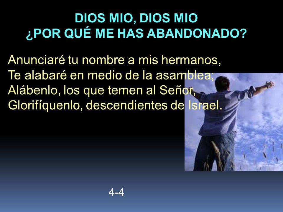 4-4 Anunciaré tu nombre a mis hermanos, Te alabaré en medio de la asamblea; Alábenlo, los que temen al Señor, Glorifíquenlo, descendientes de Israel.