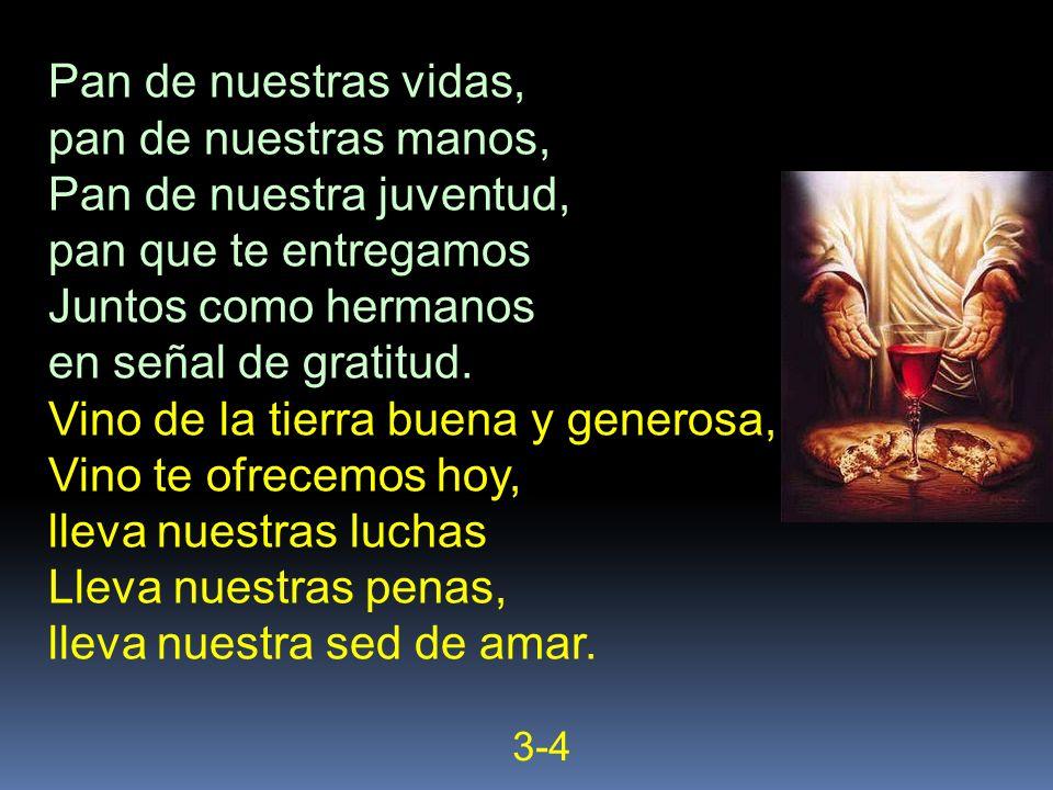 Pan de nuestras vidas, pan de nuestras manos, Pan de nuestra juventud, pan que te entregamos Juntos como hermanos en señal de gratitud. Vino de la tie