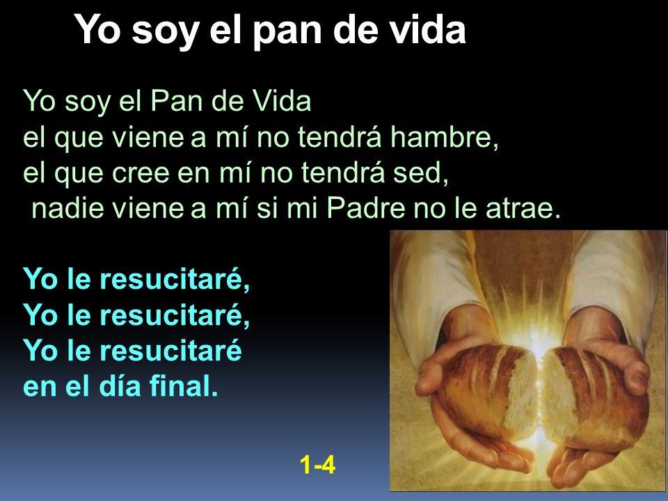 Yo soy el Pan de Vida el que viene a mí no tendrá hambre, el que cree en mí no tendrá sed, nadie viene a mí si mi Padre no le atrae. Yo le resucitaré,