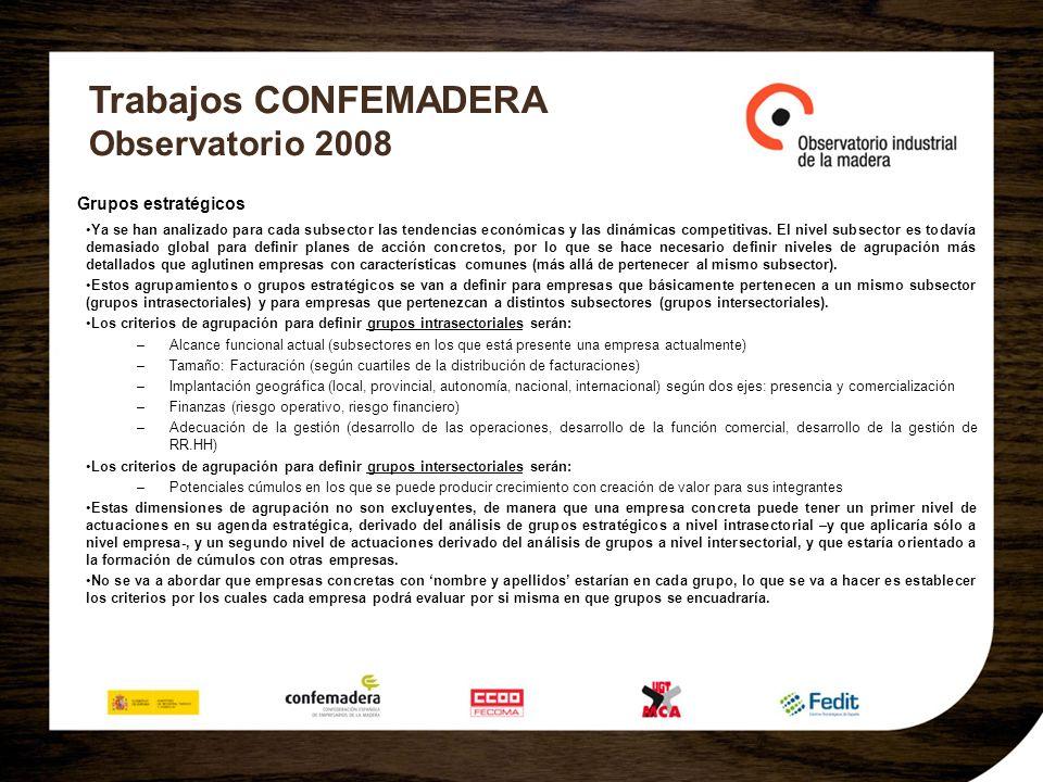 Trabajos CONFEMADERA Observatorio 2008 Grupos estratégicos Ya se han analizado para cada subsector las tendencias económicas y las dinámicas competiti