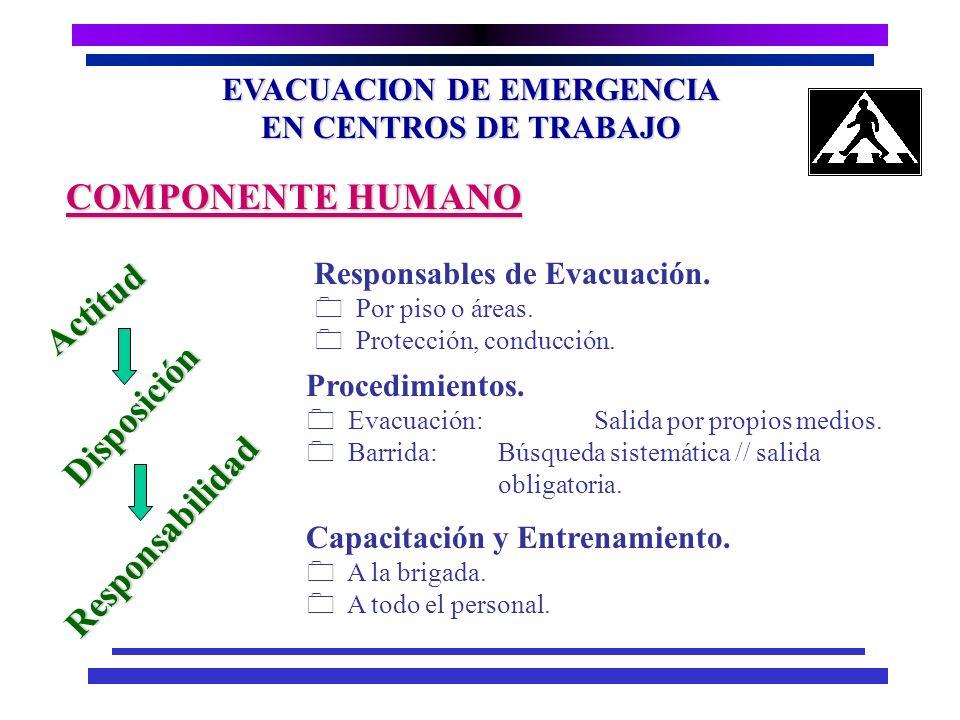 EVACUACION DE EMERGENCIA EN CENTROS DE TRABAJO Espacio. Capacidad de absorción de los espacios abiertos en el el entorno. Adecuación de los espacios a