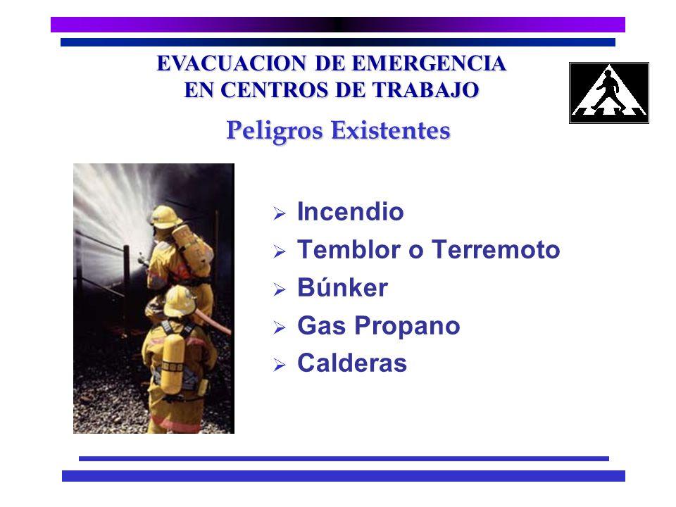 EVACUACION DE EMERGENCIA EN CENTROS DE TRABAJO Tipo de peligros existentes en el área Técnicas para el combate de incendios Técnicas básicas de primer