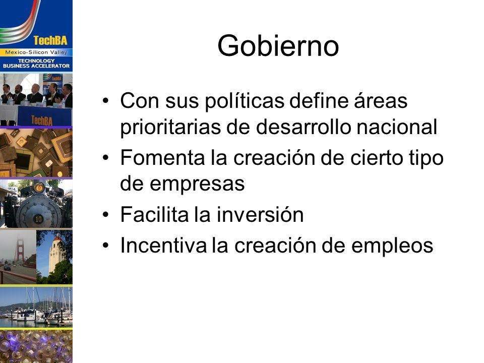 Gobierno Con sus políticas define áreas prioritarias de desarrollo nacional Fomenta la creación de cierto tipo de empresas Facilita la inversión Incen