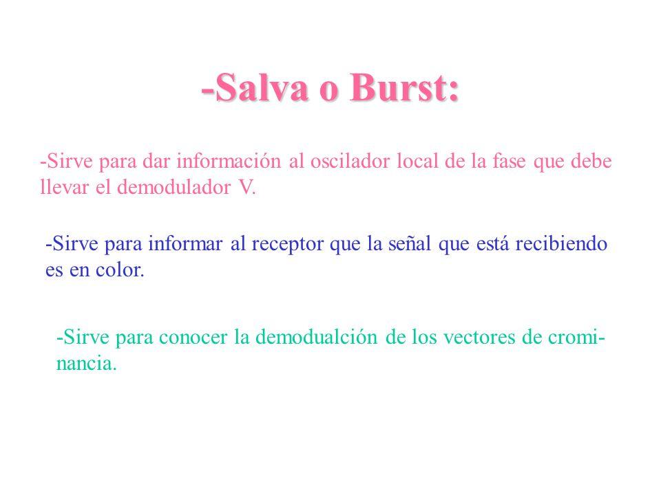 -Salva o Burst: -Sirve para dar información al oscilador local de la fase que debe llevar el demodulador V. -Sirve para informar al receptor que la se