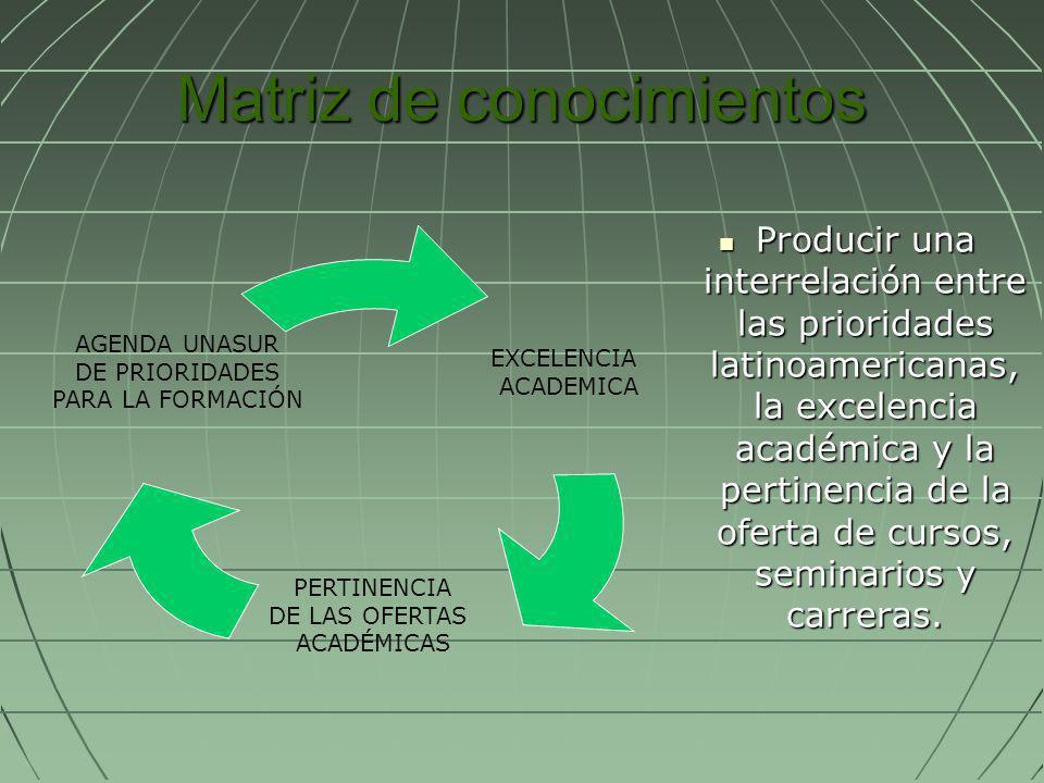 Matriz de conocimientos Producir una interrelación entre las prioridades latinoamericanas, la excelencia académica y la pertinencia de la oferta de cu