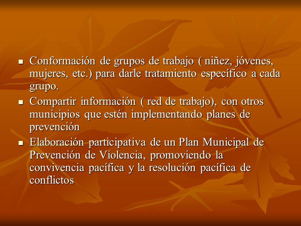 Conformación de grupos de trabajo ( niñez, jóvenes, mujeres, etc.) para darle tratamiento específico a cada grupo. Conformación de grupos de trabajo (