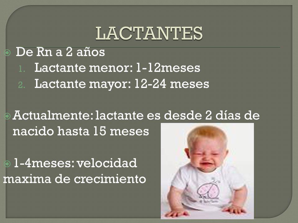 De Rn a 2 años 1. Lactante menor: 1-12meses 2. Lactante mayor: 12-24 meses Actualmente: lactante es desde 2 días de nacido hasta 15 meses 1-4meses: ve