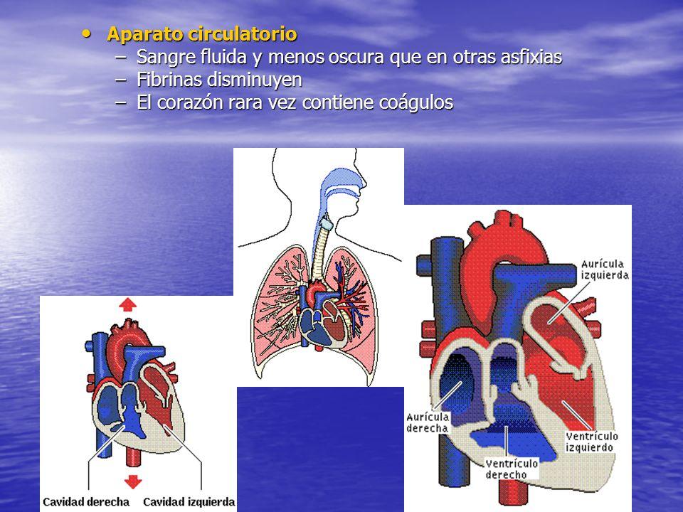Aparato circulatorio Aparato circulatorio –Sangre fluida y menos oscura que en otras asfixias –Fibrinas disminuyen –El corazón rara vez contiene coágulos