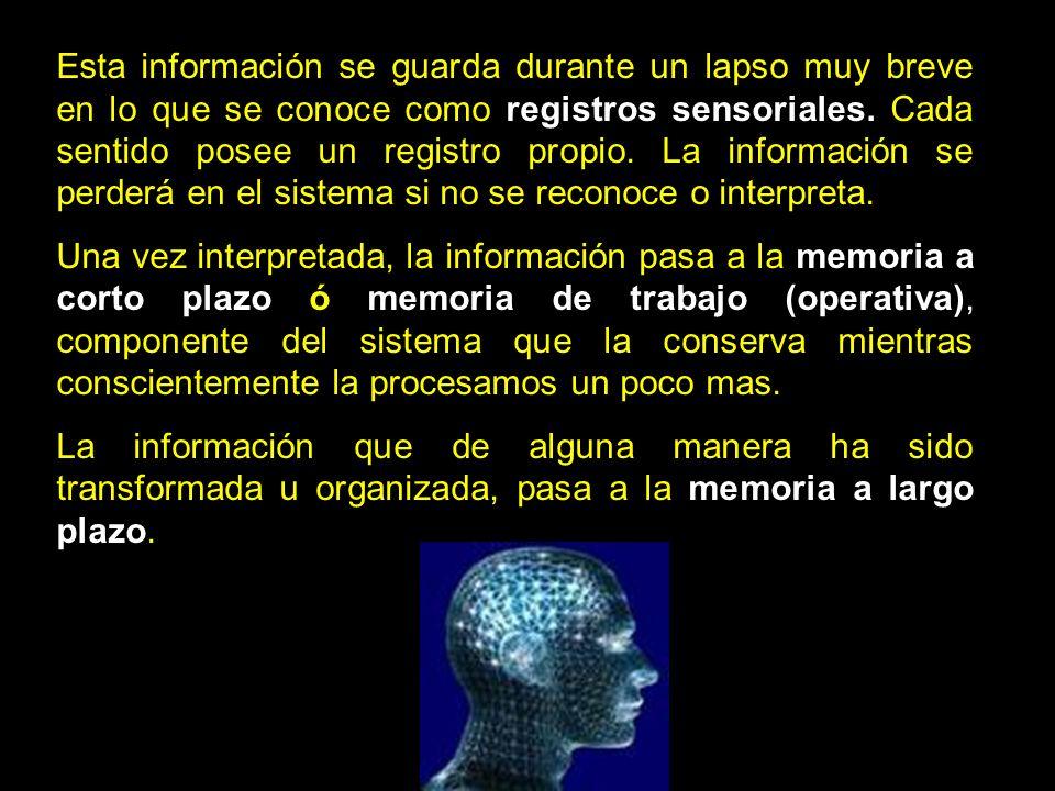 Esta información se guarda durante un lapso muy breve en lo que se conoce como registros sensoriales. Cada sentido posee un registro propio. La inform
