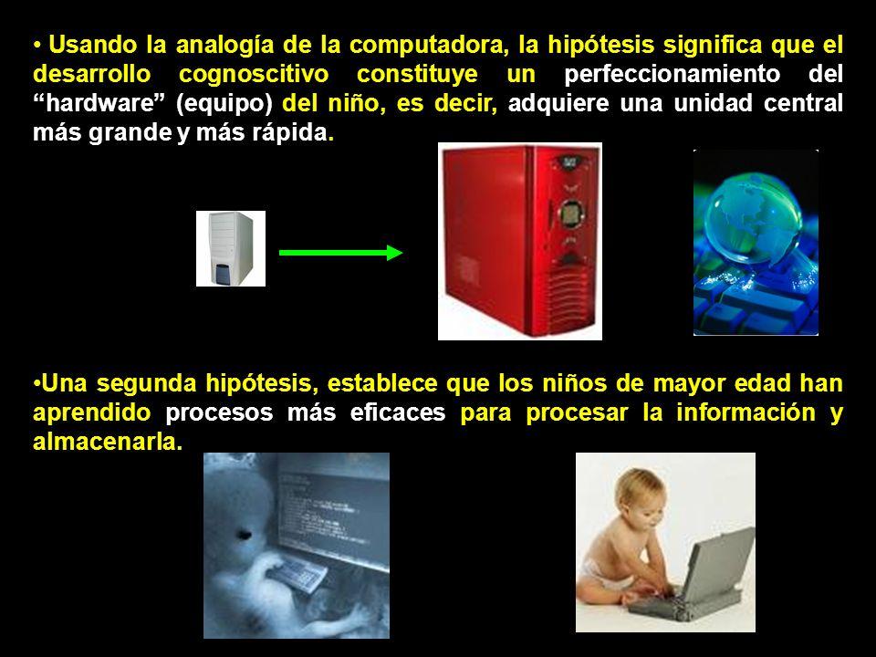 Usando la analogía de la computadora, la hipótesis significa que el desarrollo cognoscitivo constituye un perfeccionamiento del hardware (equipo) del