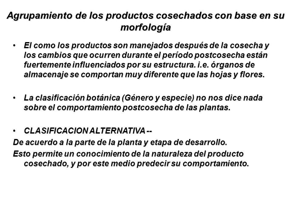 Agrupamiento de los productos cosechados con base en su morfología El como los productos son manejados después de la cosecha y los cambios que ocurren