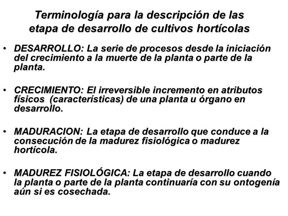 Terminología para la descripción de las etapa de desarrollo de cultivos hortícolas DESARROLLO: La serie de procesos desde la iniciación del crecimient