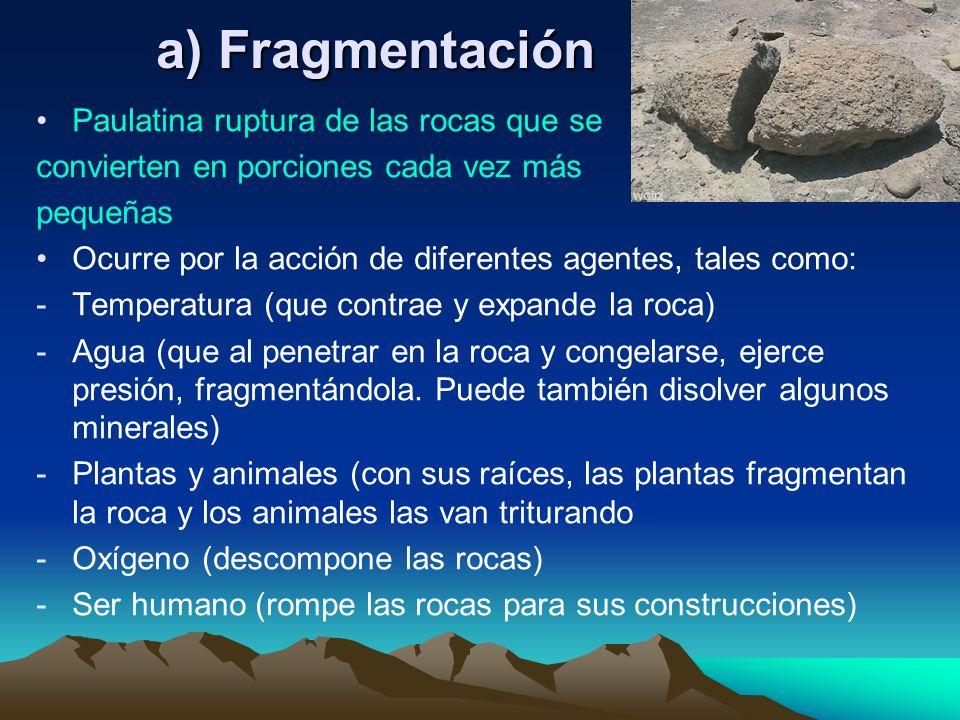 Paulatina ruptura de las rocas que se convierten en porciones cada vez más pequeñas Ocurre por la acción de diferentes agentes, tales como: -Temperatu