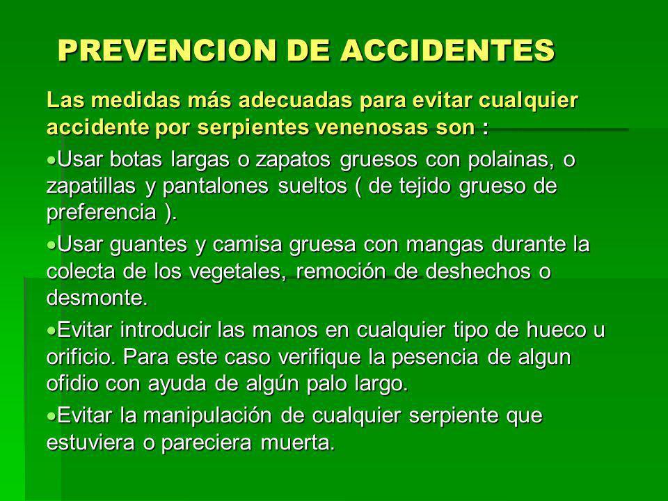 PREVENCION DE ACCIDENTES Las medidas más adecuadas para evitar cualquier accidente por serpientes venenosas son : Usar botas largas o zapatos gruesos