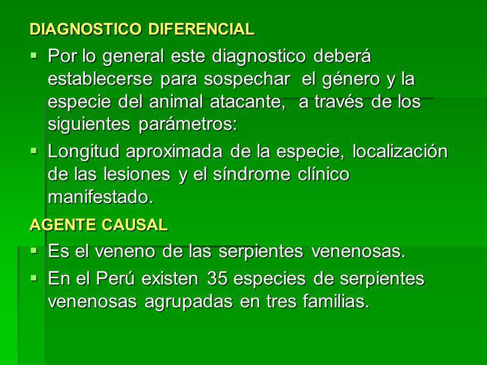 DIAGNOSTICO DIFERENCIAL Por lo general este diagnostico deberá establecerse para sospechar el género y la especie del animal atacante, a través de los