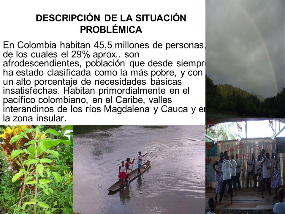 DESCRIPCIÓN DE LA SITUACIÓN PROBLÉMICA En Colombia habitan 45,5 millones de personas, de los cuales el 29% aprox..