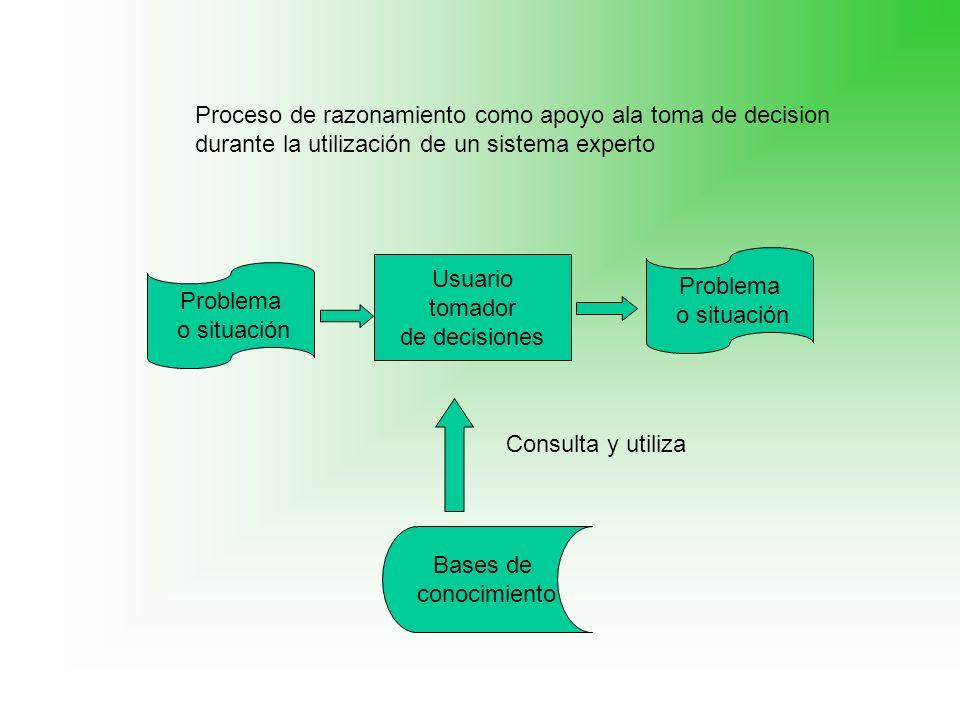 Problema o situación Problema o situación Usuario tomador de decisiones Bases de conocimiento Consulta y utiliza Proceso de razonamiento como apoyo al