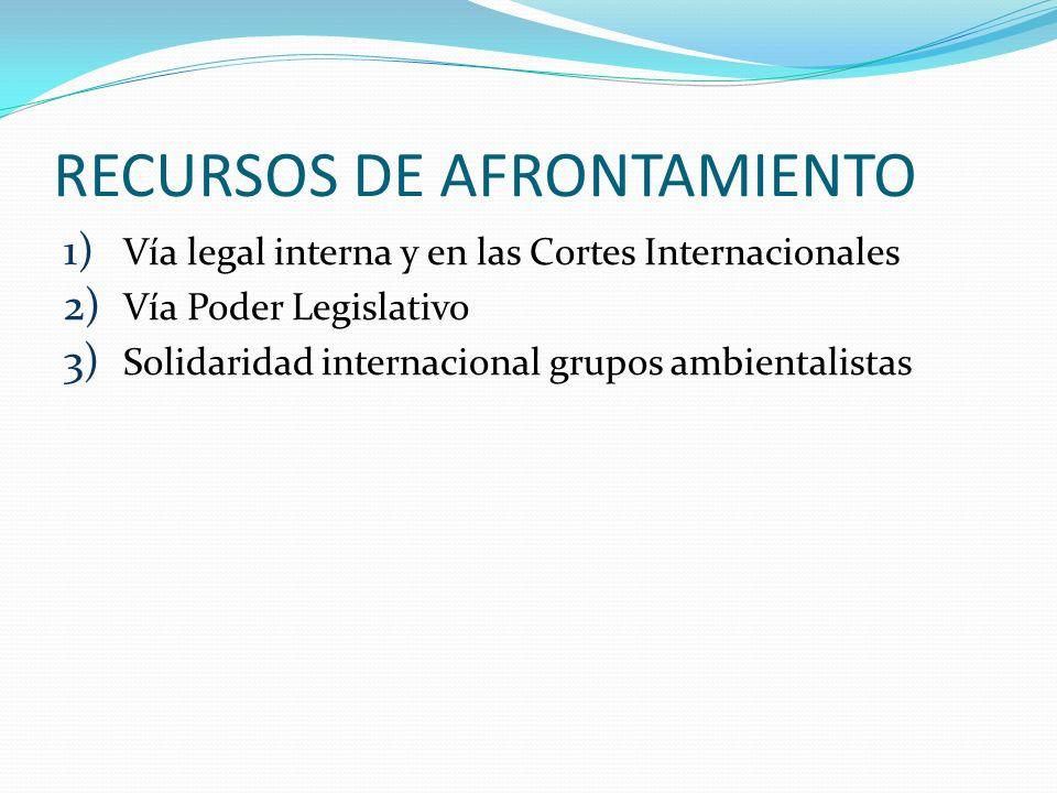 RECURSOS DE AFRONTAMIENTO 1) Vía legal interna y en las Cortes Internacionales 2) Vía Poder Legislativo 3) Solidaridad internacional grupos ambientali