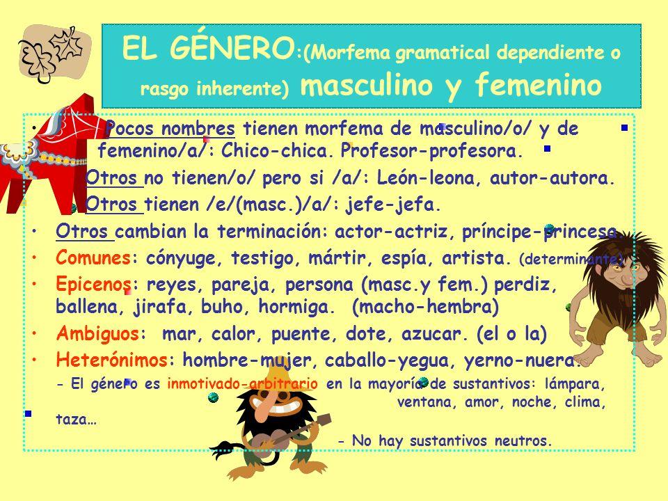 EL NÚMERO: singular y plural Morfema gramatical dependiente El singular no tiene morfema /O/ El morfema de plural/s/y/es/ Vocal: /s/ gato-s, mesa-s, c