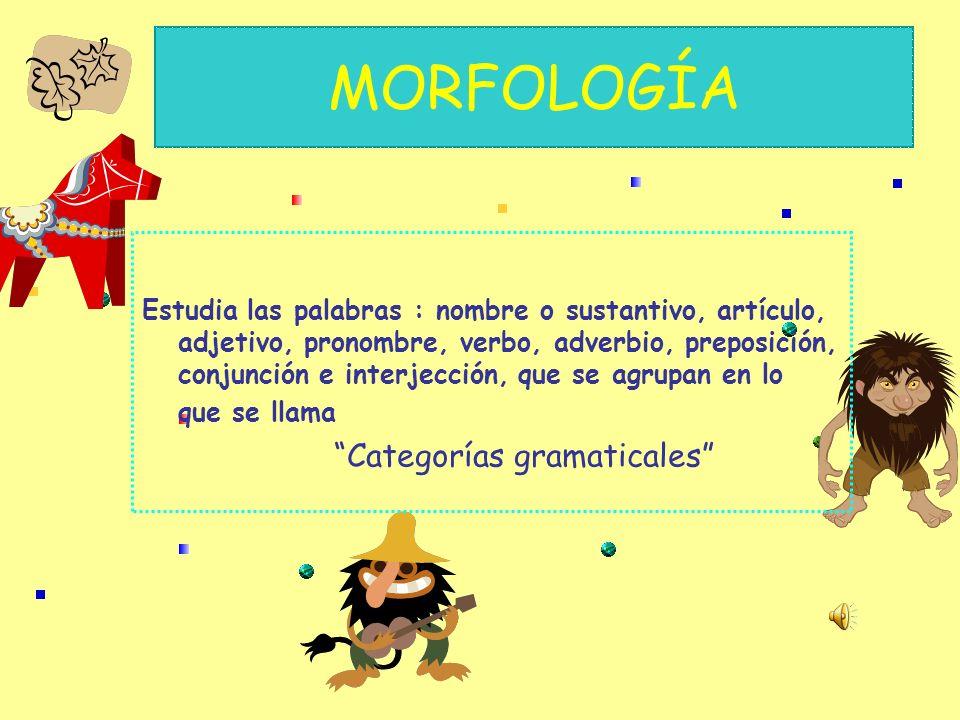 MORFOLOGÍA Estudia las palabras : nombre o sustantivo, artículo, adjetivo, pronombre, verbo, adverbio, preposición, conjunción e interjección, que se agrupan en lo que se llama Categorías gramaticales