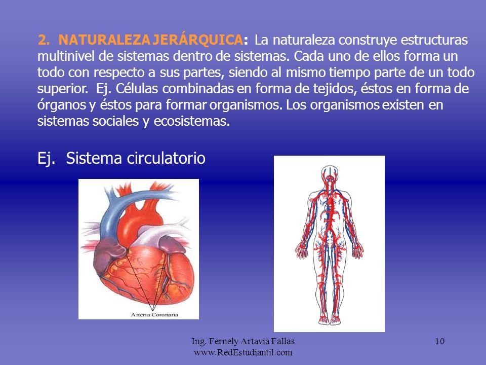 Ing. Fernely Artavia Fallas www.RedEstudiantil.com 10 2. NATURALEZA JERÁRQUICA: La naturaleza construye estructuras multinivel de sistemas dentro de s