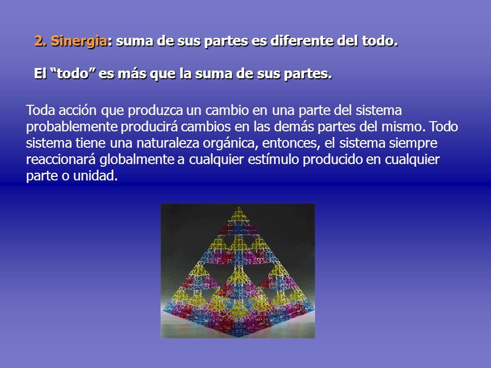 2. Sinergia: suma de sus partes es diferente del todo. El todo es más que la suma de sus partes. Toda acción que produzca un cambio en una parte del s