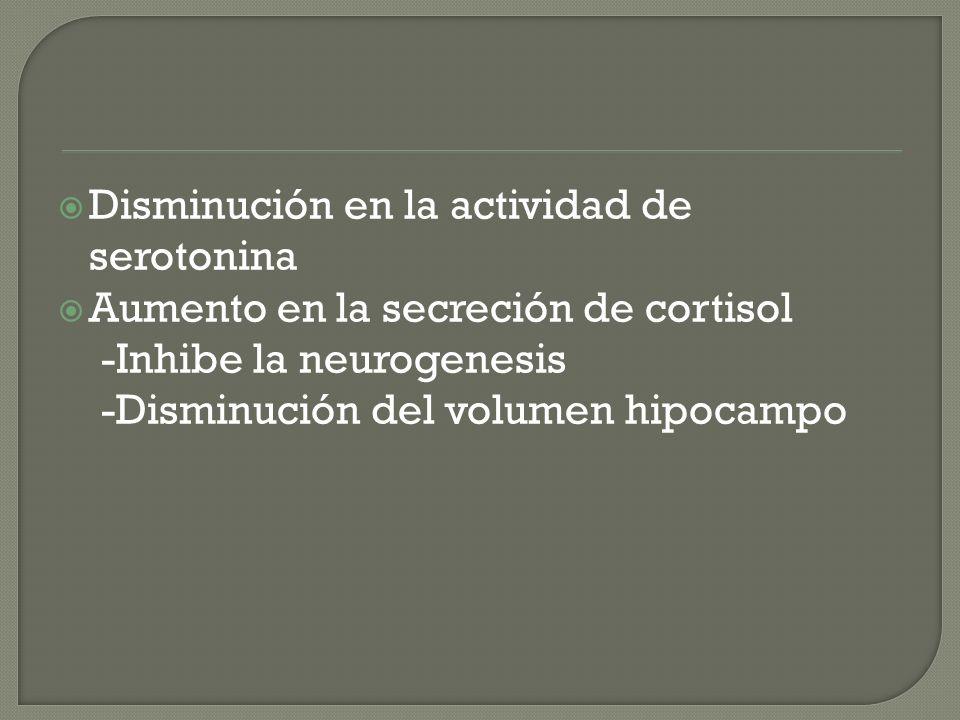 Disminución en la actividad de serotonina Aumento en la secreción de cortisol -Inhibe la neurogenesis -Disminución del volumen hipocampo