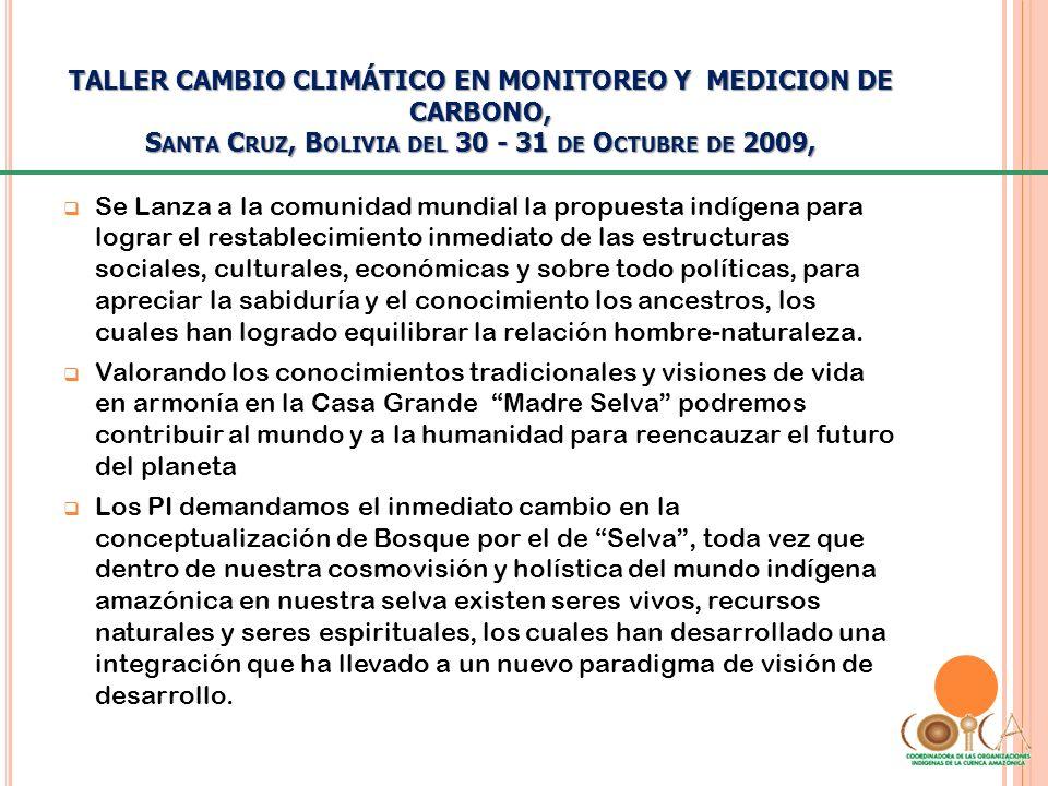 TALLER CAMBIO CLIMÁTICO EN MONITOREO Y MEDICION DE CARBONO, S ANTA C RUZ, B OLIVIA DEL 30 - 31 DE O CTUBRE DE 2009, Se Lanza a la comunidad mundial la
