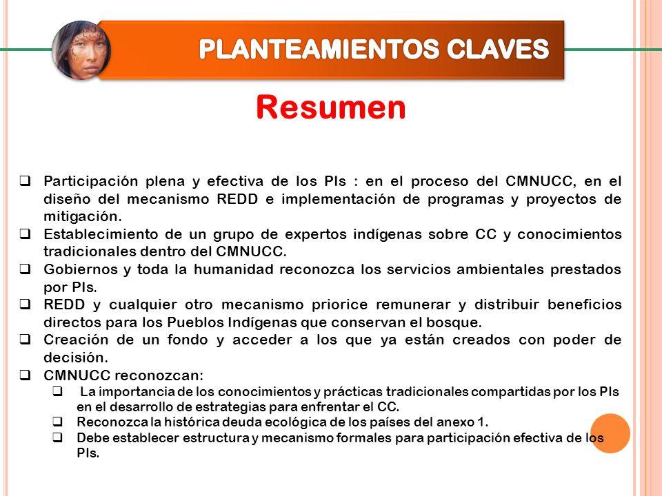 Resumen Participación plena y efectiva de los PIs : en el proceso del CMNUCC, en el diseño del mecanismo REDD e implementación de programas y proyecto