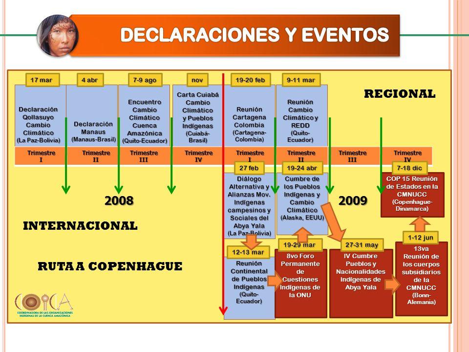 D eclaración del Q ollasuyo 17 de marzo 2008 17 de marzo 2008 Declaran: Participación plena y efectiva en el proceso del CMNUCC, CDB, ÁPs entre otras.