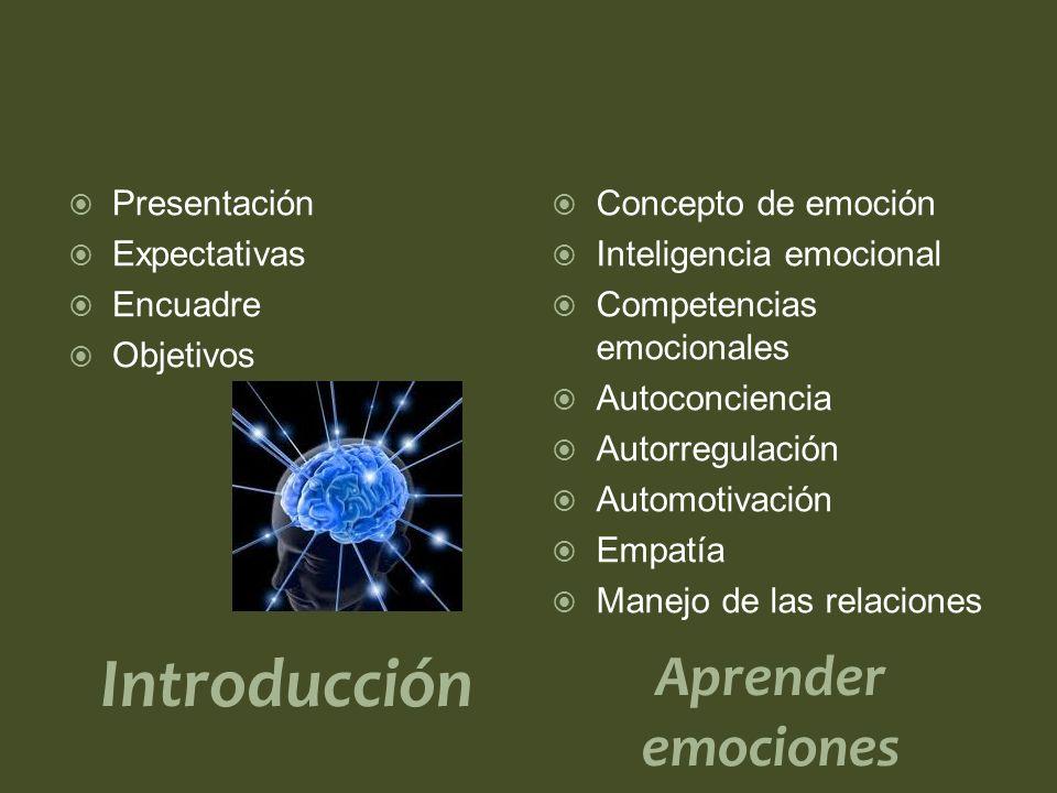 Introducción Presentación Expectativas Encuadre Objetivos Aprender emociones Concepto de emoción Inteligencia emocional Competencias emocionales Autoconciencia Autorregulación Automotivación Empatía Manejo de las relaciones