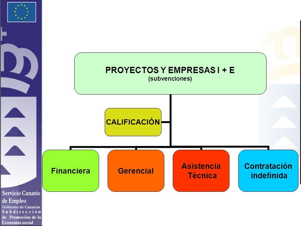 PROYECTOS Y EMPRESAS I + E (subvenciones) FinancieraGerencial Asistencia Técnica Contratación indefinida CALIFICACIÓN