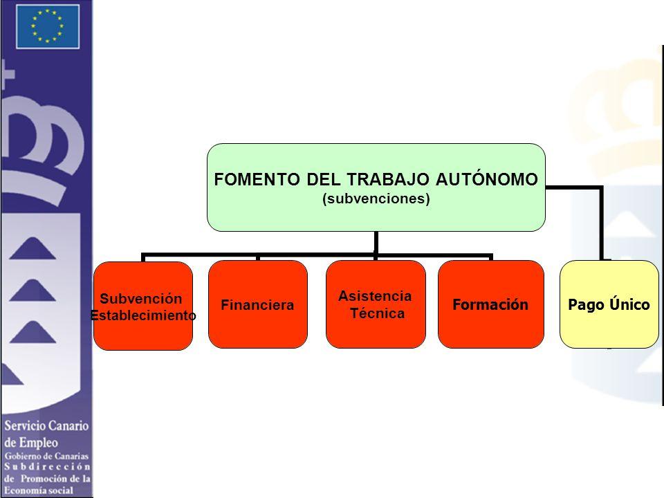 FOMENTO DEL TRABAJO AUTÓNOMO (subvenciones) Subvención Establecimiento Financiera Asistencia Técnica FormaciónPago Único