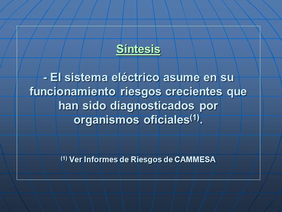 Síntesis - El sistema eléctrico asume en su funcionamiento riesgos crecientes que han sido diagnosticados por organismos oficiales (1). (1) Ver Inform