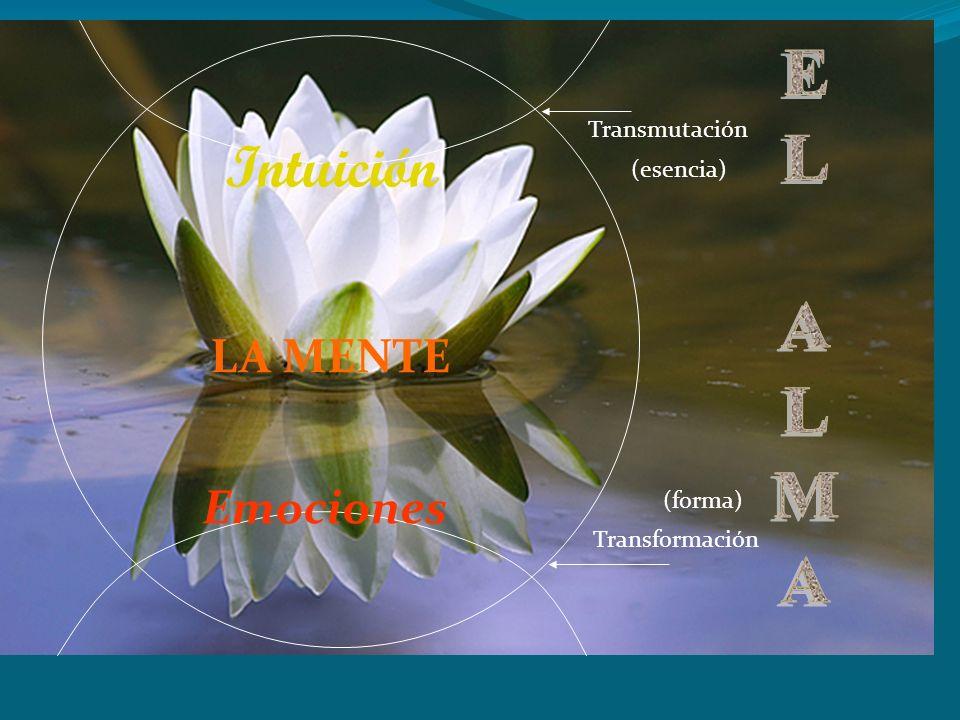 LA MENTE Emociones Intuición Transmutación Transformación (esencia) (forma)